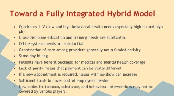 investing in hybrid model health care